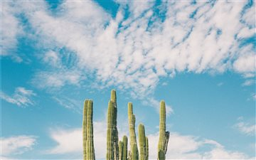 Baja California, Mexico All Mac wallpaper