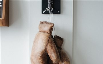 Boxing Gloves All Mac wallpaper