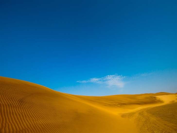 Golden desert Mac Wallpaper