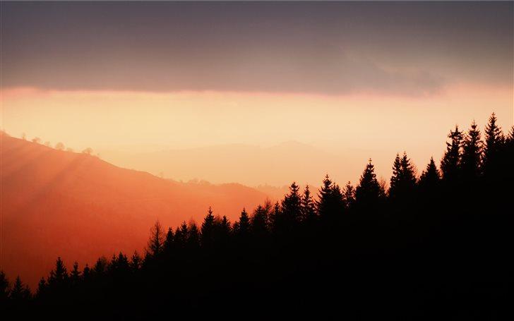 silhouette of trees under orange sky Mac Wallpaper