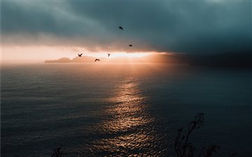 photo of flying birds over body of water All Mac wallpaper