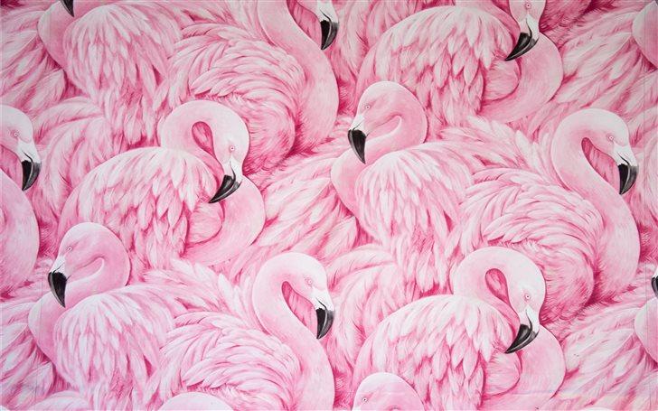 pink flamingos Mac Wallpaper