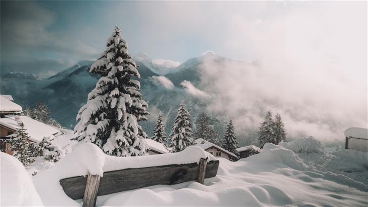 snow covered mountains and trees during daytime Mac Wallpaper