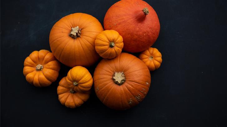 orange pumpkins Mac Wallpaper