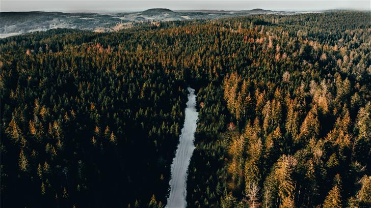aerial view photography of lake between trees Mac Wallpaper