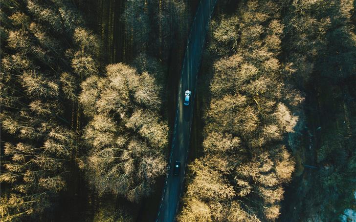 aerial view of two vehicles on road between trees Mac Wallpaper