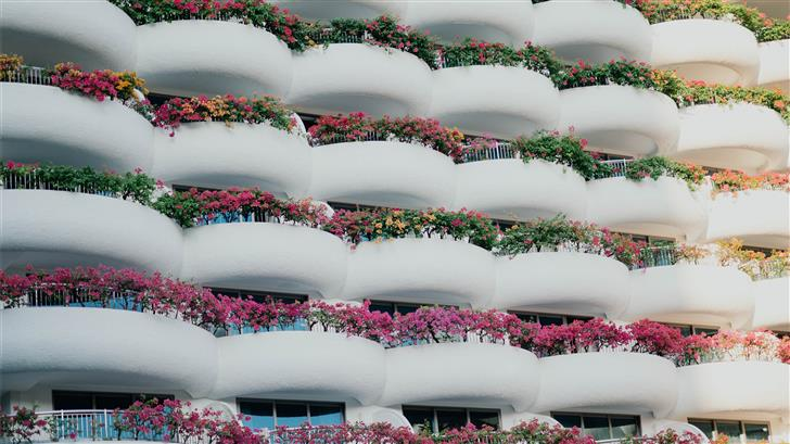 white building with balconies and plants Mac Wallpaper