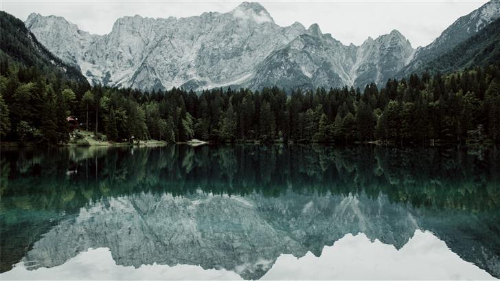 reflections on trees on lake Mac Wallpaper