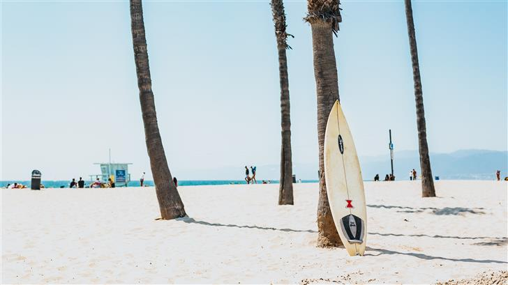 selective focus photography of white surfboard Mac Wallpaper