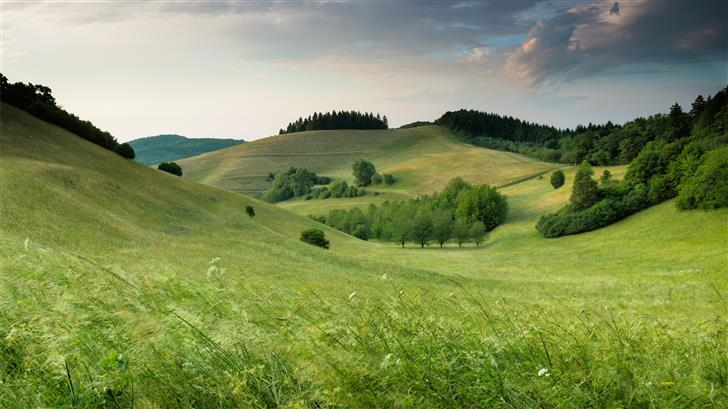 green hills with forest under cloudy sky during da Mac Wallpaper