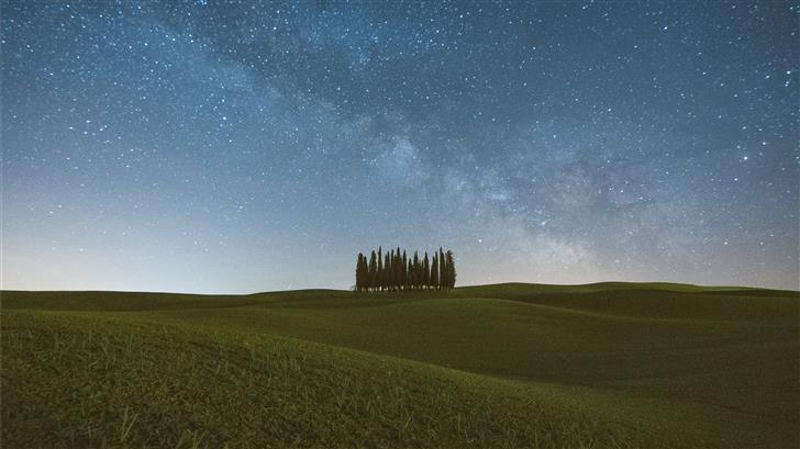 green trees Mac Wallpaper