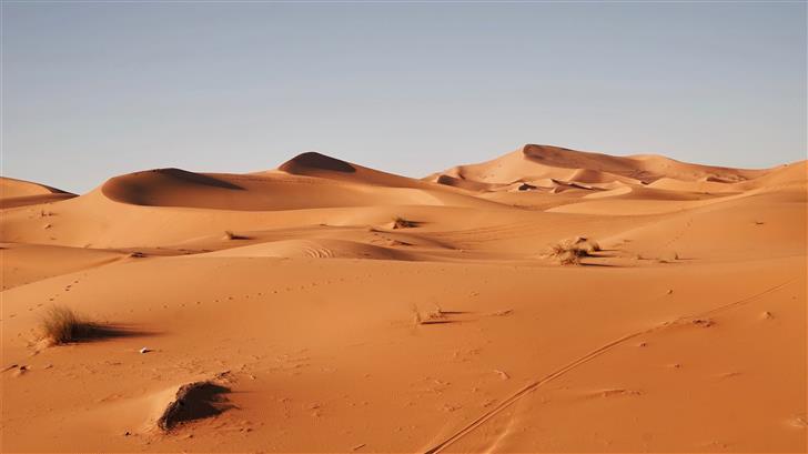 landscape photography of desert Mac Wallpaper