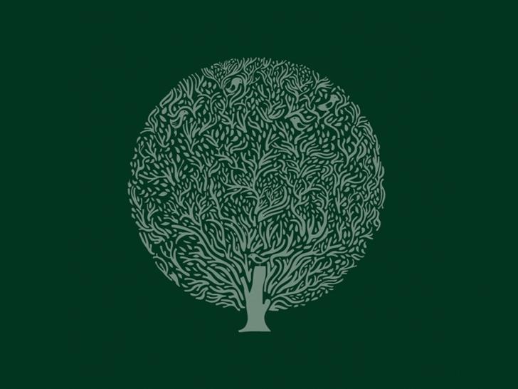 Minimalist simple background trees Mac Wallpaper