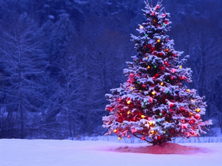 Decorated Christmas Tree Mac Wallpaper