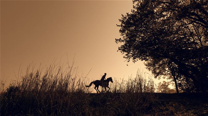 silhouette of person riding horse Mac Wallpaper