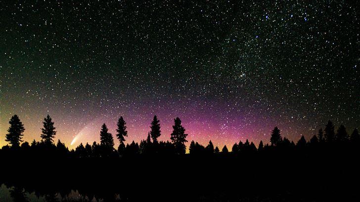 comet in the pines Mac Wallpaper