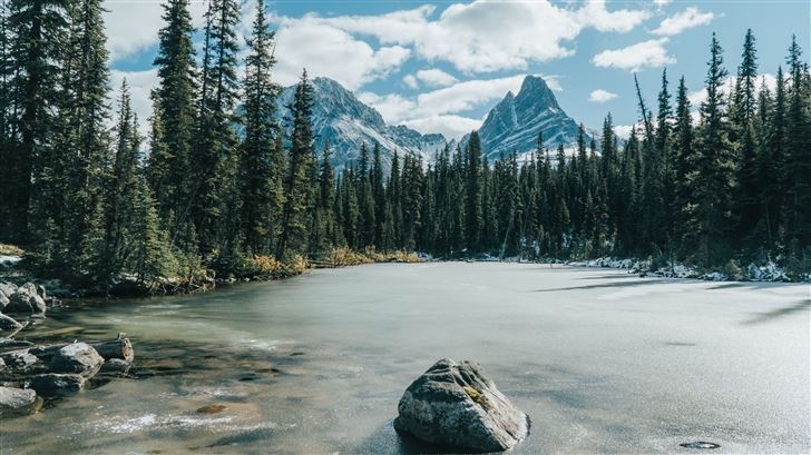frozen lake covered in trees forest 5k Mac Wallpaper