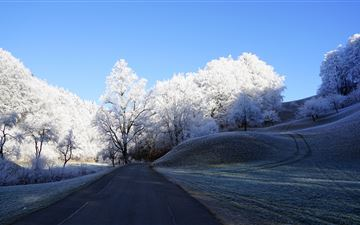 hill frost road trees 8k MacBook Pro wallpaper