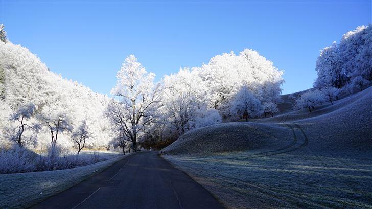 hill frost road trees 8k Mac Wallpaper