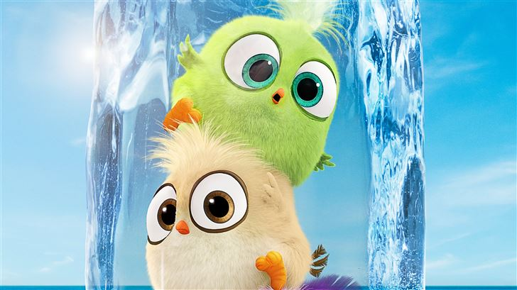hatchlings in the angry birds movie 2 Mac Wallpaper