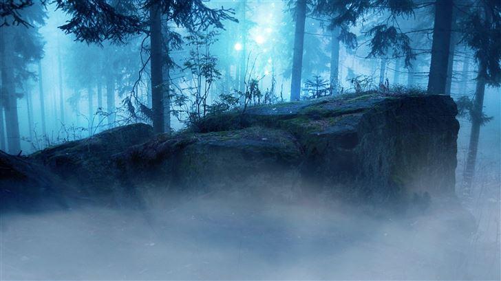 landscape forest dark evening Mac Wallpaper