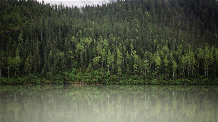 trees water nature clouds 5k Mac Wallpaper