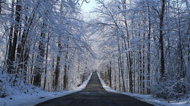 winter road way 5k Mac Wallpaper