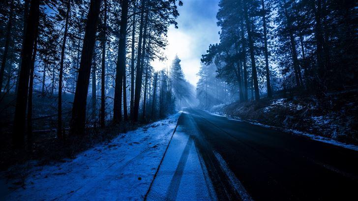 forest snowy dark evening 5k Mac Wallpaper