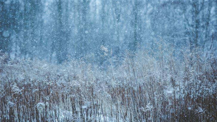 winter snow field 5k Mac Wallpaper