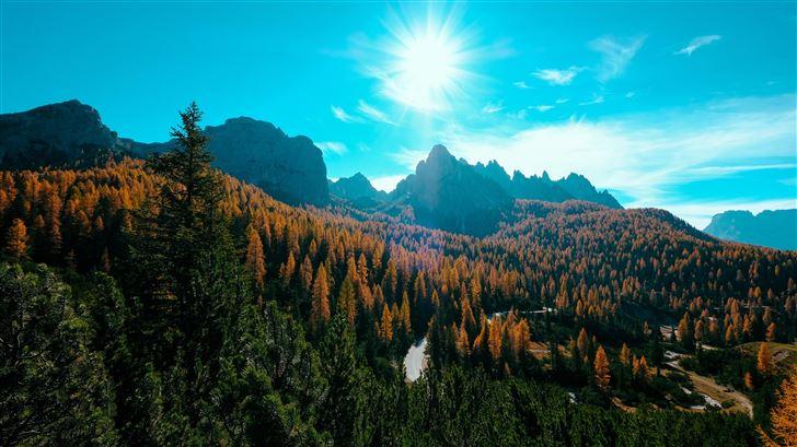landscape trees nature forest 5k Mac Wallpaper