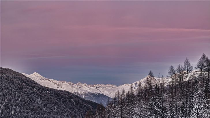 mountain covered with snow and surrounedd in trees Mac Wallpaper