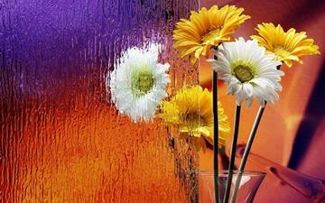 Flower glass Mac wallpaper