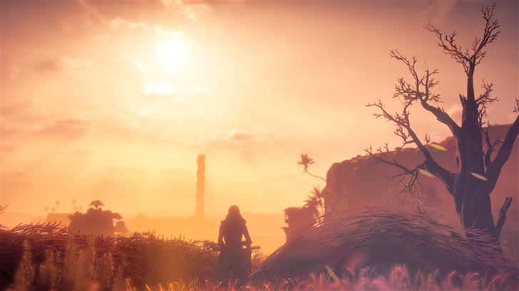aloy watching sunset Mac Wallpaper