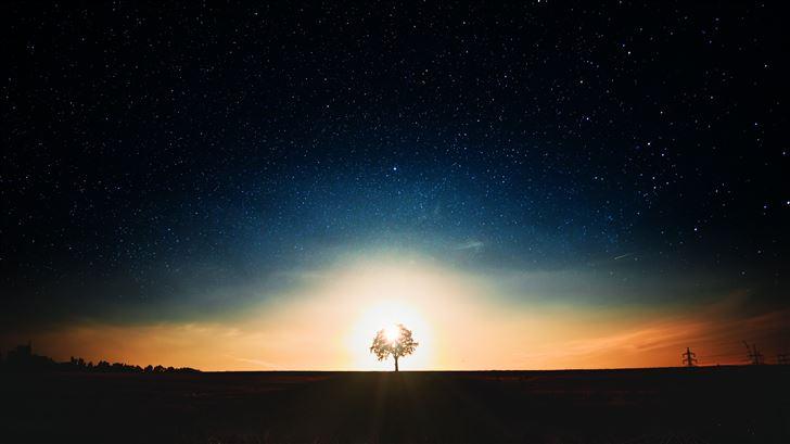 tree dark landscape 5k Mac Wallpaper