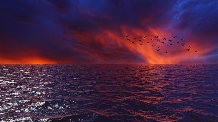 waves sky birds 4k Mac Wallpaper