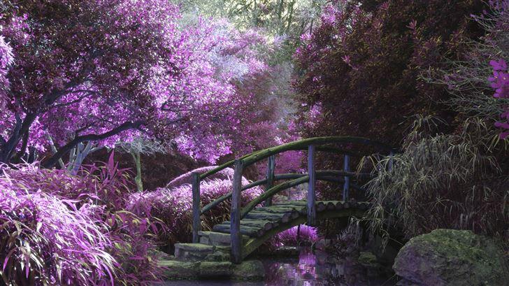 magical garden 5k Mac Wallpaper