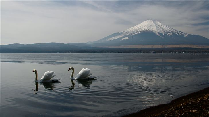 mount fuji landscape view ducks 5k Mac Wallpaper
