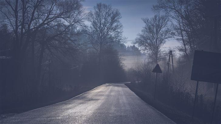 road tree mist 5k Mac Wallpaper
