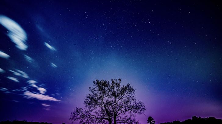 tree galaxy sky 8k Mac Wallpaper
