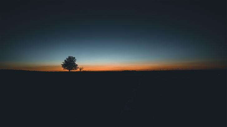daybreak tree landscape 5k Mac Wallpaper