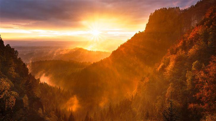 forest valley day starting calming sunrise 5k Mac Wallpaper