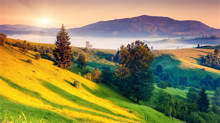 sunrises and sunsets scenery grass hill 5k Mac Wallpaper