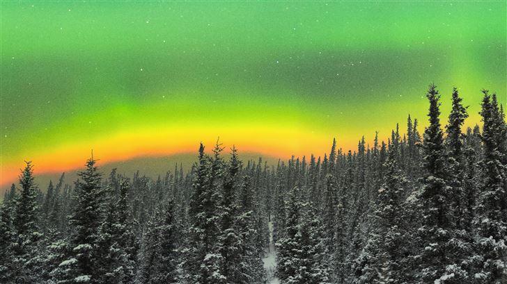 rare orange aurora above a snowy forest 5k Mac Wallpaper