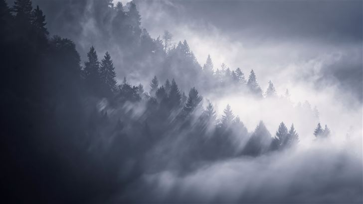 snow fog trees 5k Mac Wallpaper