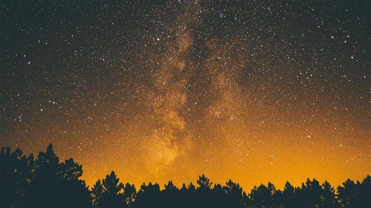 silhouette trees under starry sky 5k Mac Wallpaper