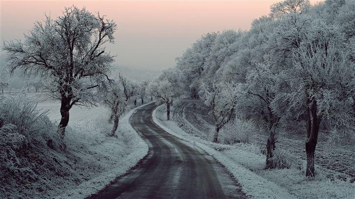 winter road snow frozen trees on sides 5k Mac Wallpaper