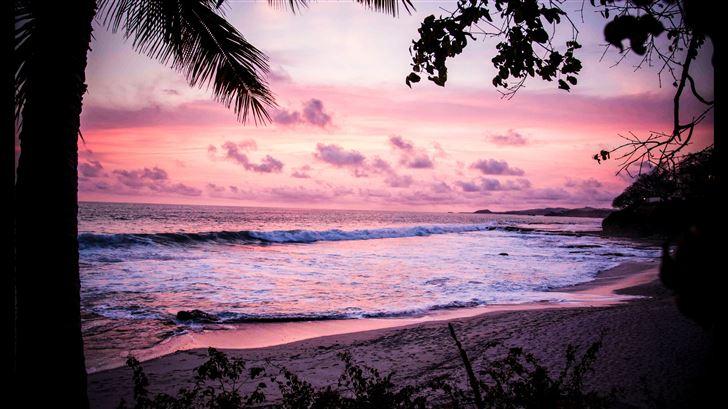 palm tree sea ocean clouds 5k Mac Wallpaper