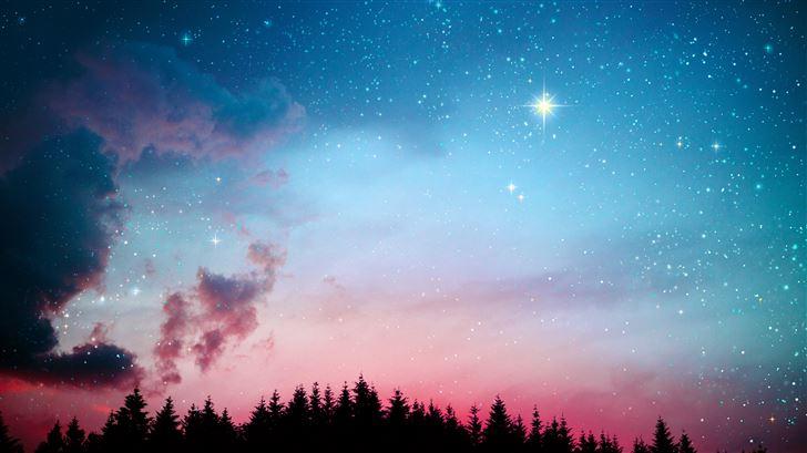 galaxy stars lights forest night 5k Mac Wallpaper