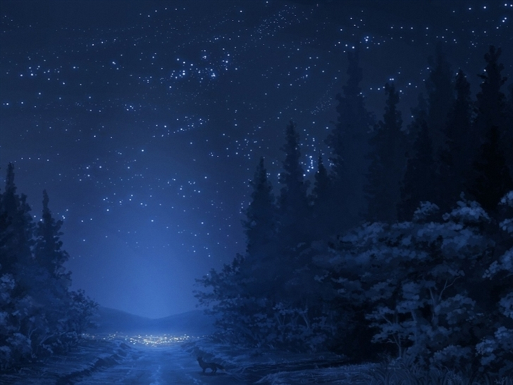 Winter Night Sky Mac Wallpaper Download Allmacwallpaper