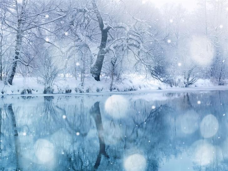 Winter Snowfall Mac Wallpaper